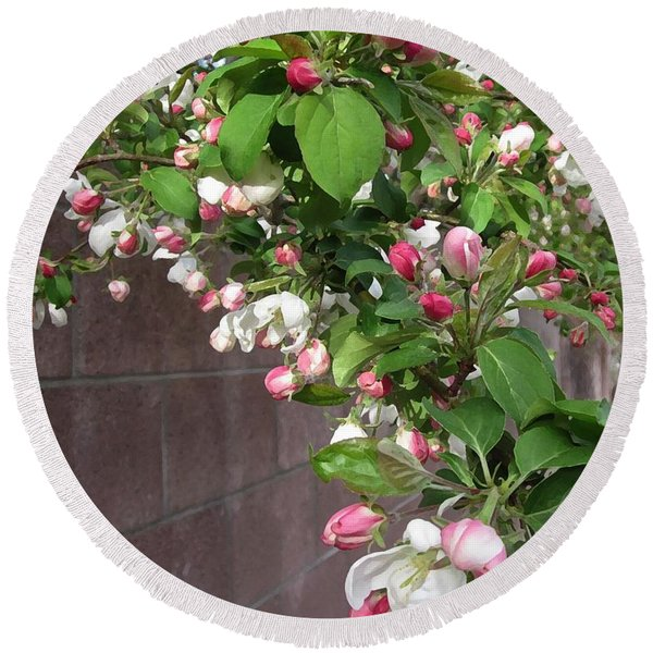 Crabapple Blossoms And Wall Round Beach Towel