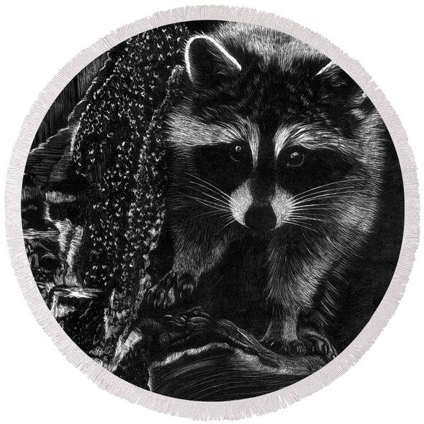 Curious Raccoon Round Beach Towel