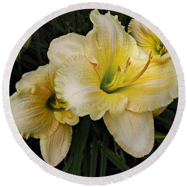 Day Lilies A Short Life Round Beach Towel