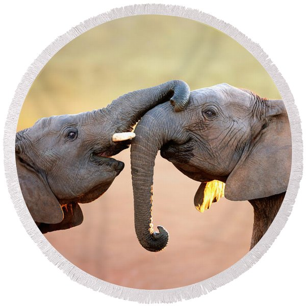 Elephants Touching Each Other Round Beach Towel