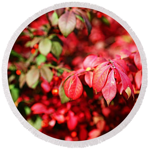 Fall Foliage Colors 10 Round Beach Towel