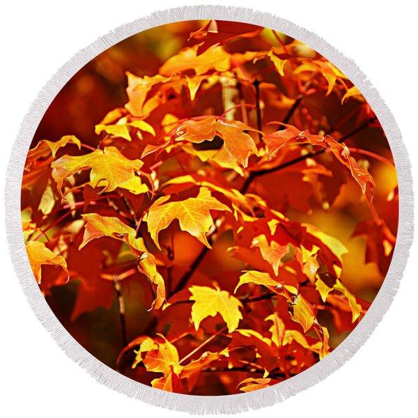 Fall Foliage Colors 14 Round Beach Towel