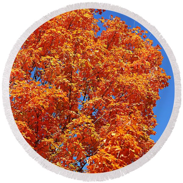 Fall Foliage Colors 18 Round Beach Towel