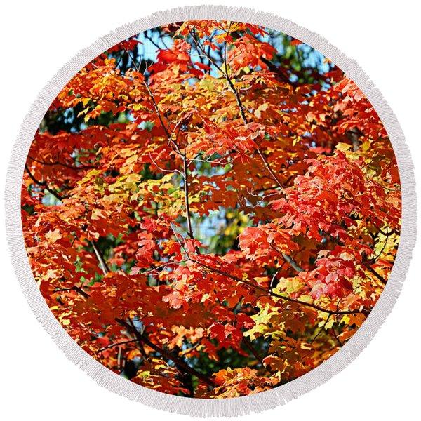 Fall Foliage Colors 22 Round Beach Towel