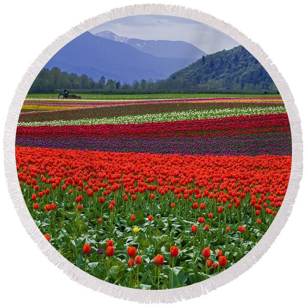 Field Of Tulips Round Beach Towel