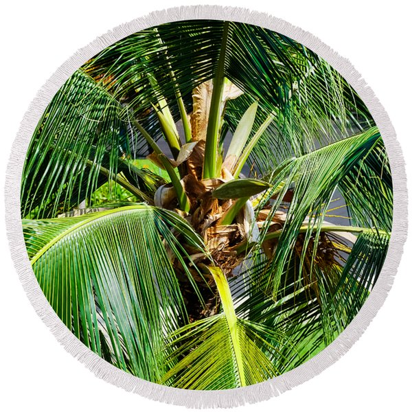 Fronds And Center Round Beach Towel