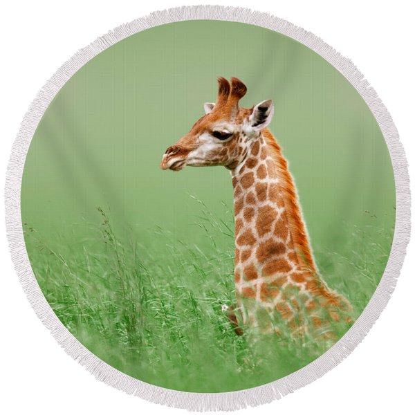 Giraffe Lying In Grass Round Beach Towel