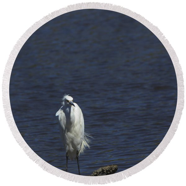 Great Egret Round Beach Towel