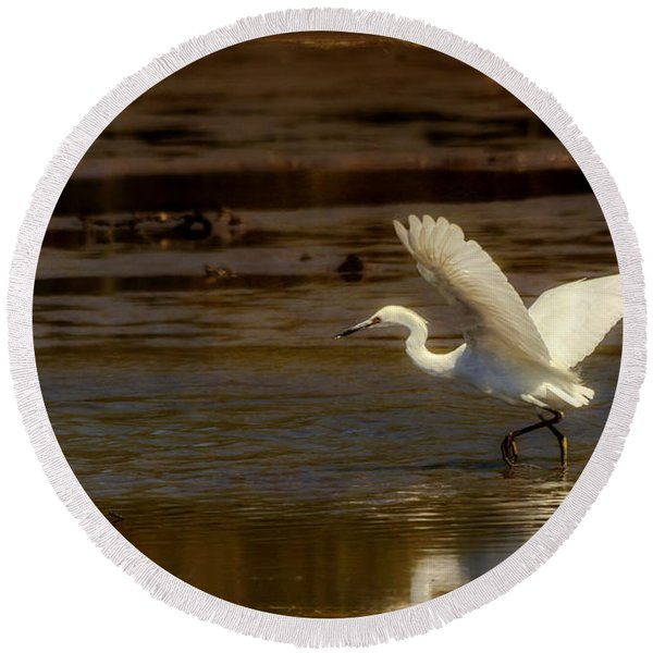 Great Egret Taking Off Round Beach Towel