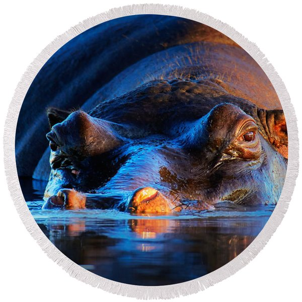 Hippopotamus  At Sunset Round Beach Towel