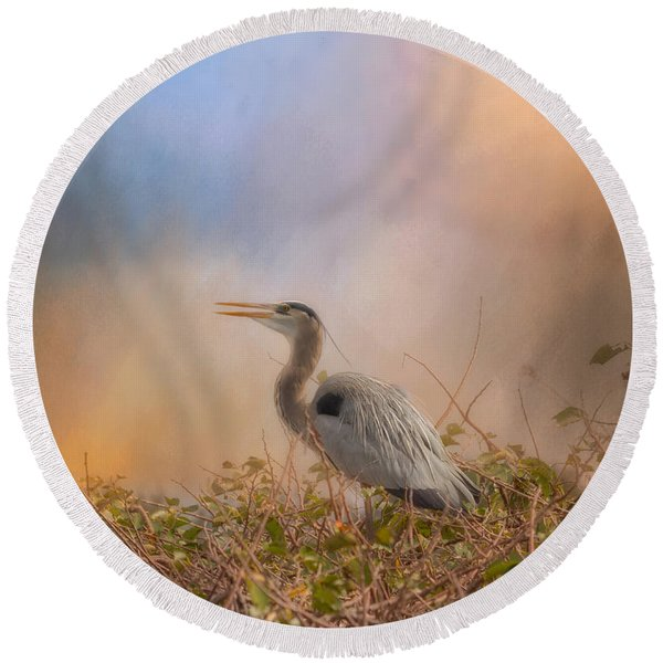 In The Nest - Great Blue Heron Round Beach Towel