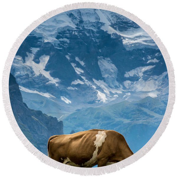 Jungfrau Cow - Grindelwald - Switzerland Round Beach Towel