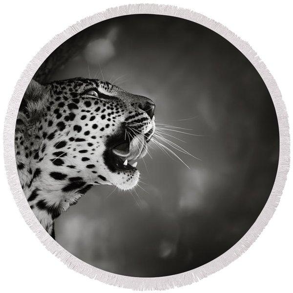 Leopard Portrait Round Beach Towel