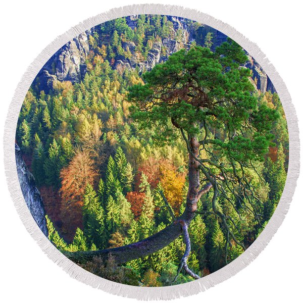 Lonely Tree In The Elbe Sandstone Mountains Round Beach Towel