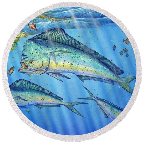Mahi Mahi In Sargassum Round Beach Towel