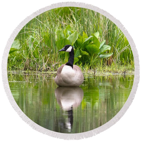 Male Goose  Round Beach Towel