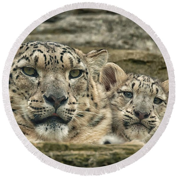 Mother And Cub Round Beach Towel