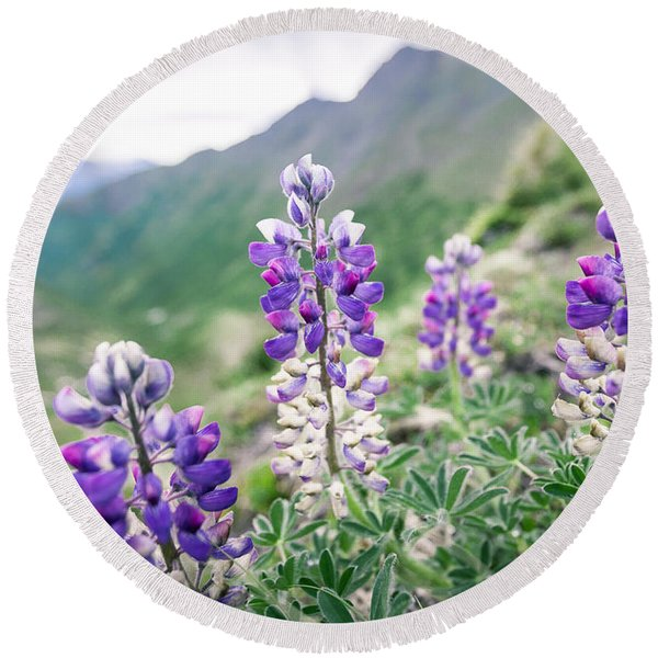 Round Beach Towel featuring the photograph Mountain Lupine by Tim Newton