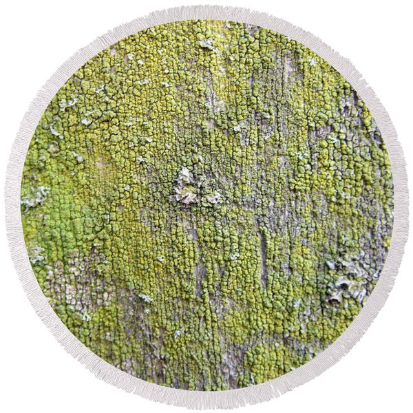 Natural Abstract 1 Old Fence With Moss Round Beach Towel