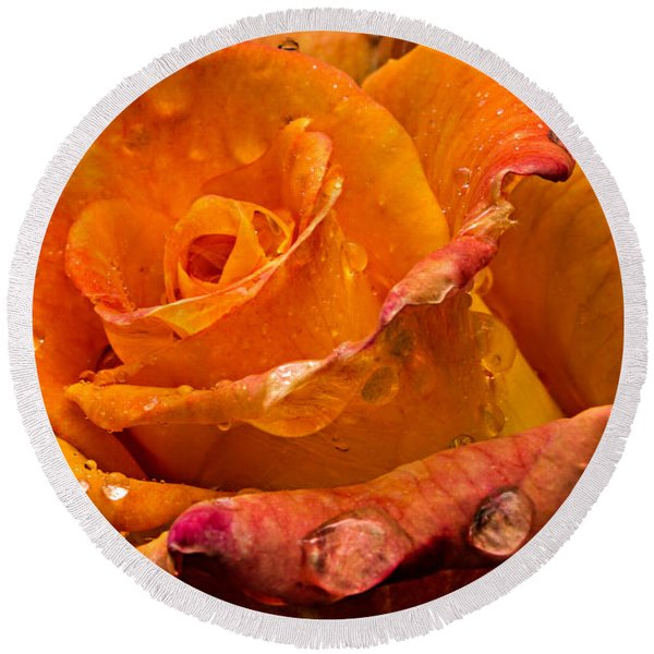 Orange Rose Drops Round Beach Towel