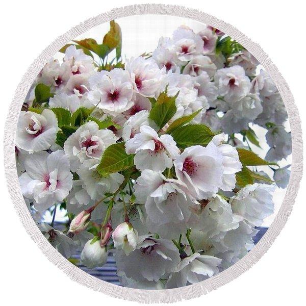 Oregon Cherry Blossoms Round Beach Towel