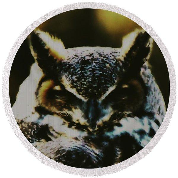 Owl Portrait Round Beach Towel