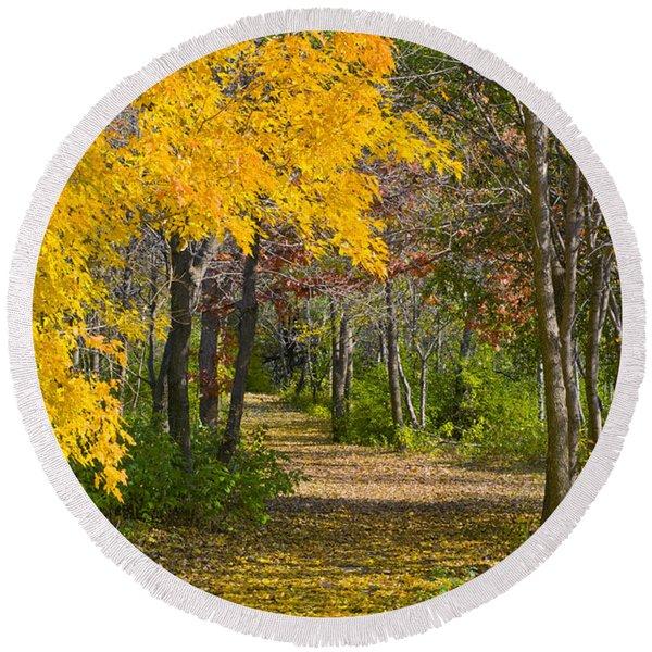Path Through Autumn Trees Round Beach Towel