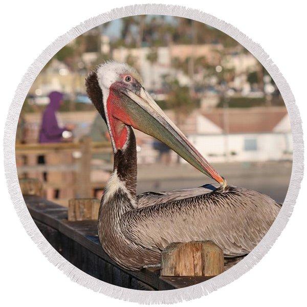 Pelican Sitting On Pier  Round Beach Towel
