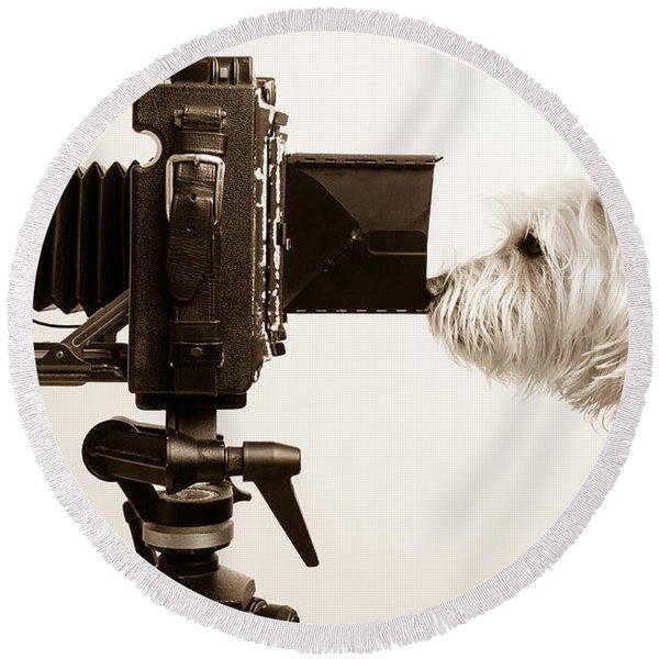Pho Dog Grapher Round Beach Towel