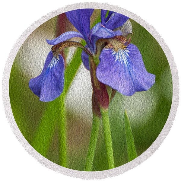 Purple Bearded Iris Oil Round Beach Towel
