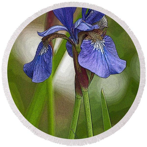 Purple Bearded Iris Watercolor With Pen Round Beach Towel