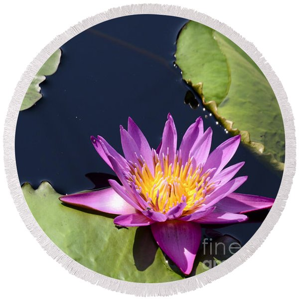Purple Waterlilly Round Beach Towel