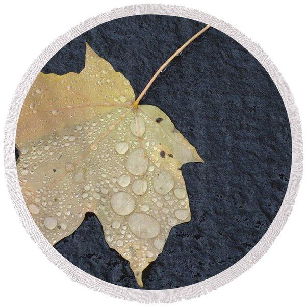 Rain Drops On A Yellow Maple Leaf Round Beach Towel