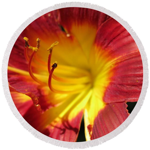 Red And Yellow Day Lily Round Beach Towel