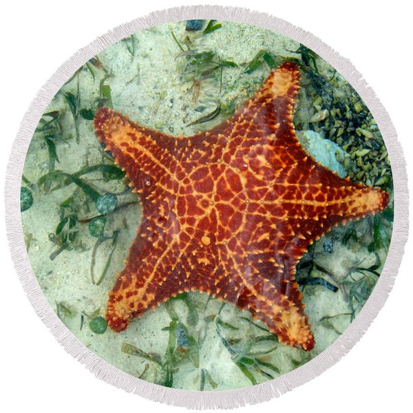 Round Beach Towel featuring the photograph Running Starfish by Mary Lee Dereske