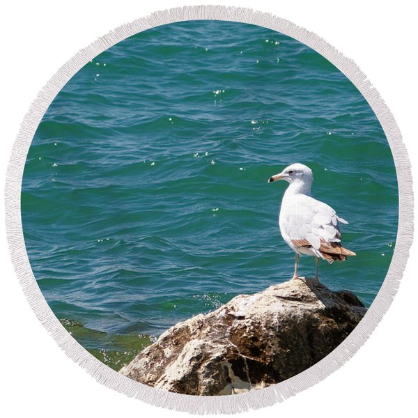 Seagull On Rock Round Beach Towel