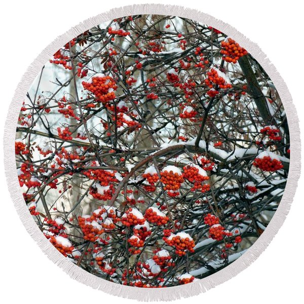 Snow- Capped Mountain Ash Berries Round Beach Towel