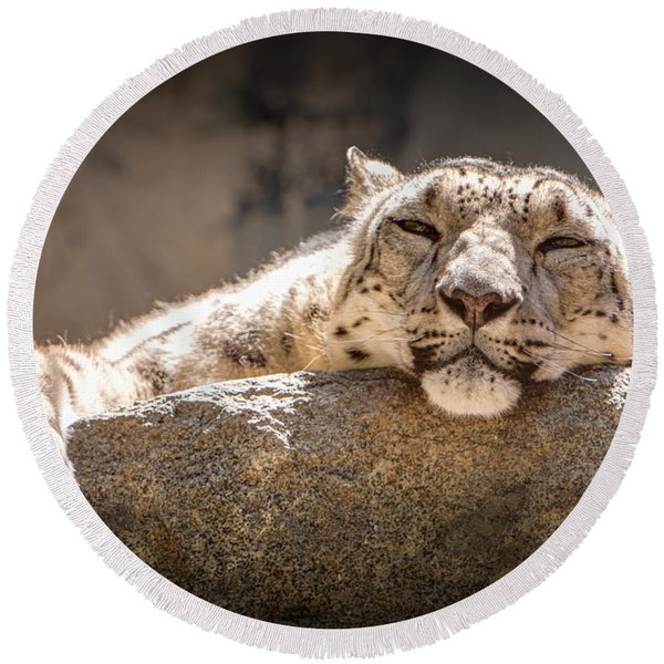 Snow Leopard Relaxing Round Beach Towel