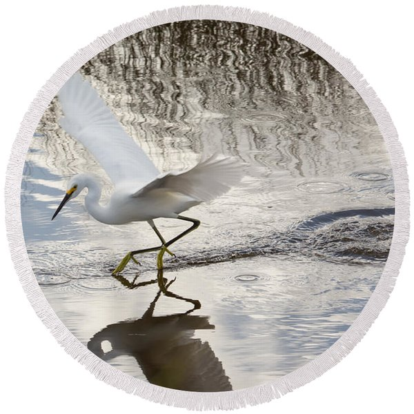 Snowy Egret Gliding Across The Water Round Beach Towel