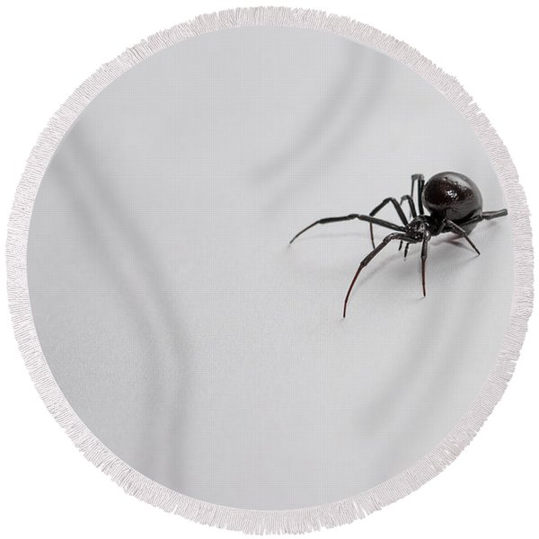 Southern Black Widow Spider Round Beach Towel