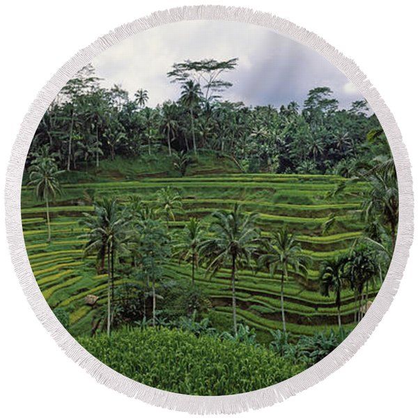 Terraced Rice Field, Bali, Indonesia Round Beach Towel