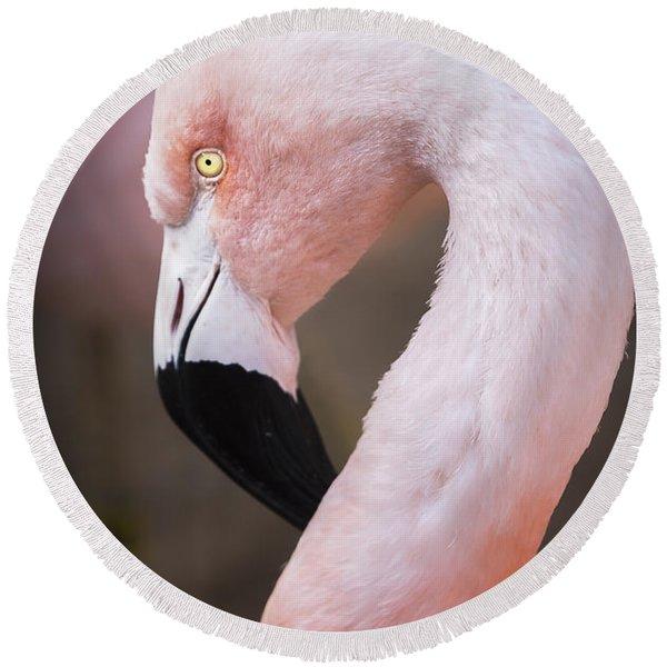 The Flamingo, Animal Decor, Nursery Decor, Flamingo Gifts, Flamingo Phone Case,  Round Beach Towel
