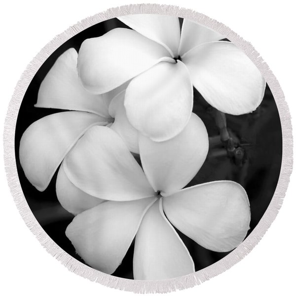 Three Plumeria Flowers In Black And White Round Beach Towel