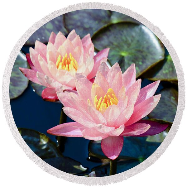 Two Pink Waterlilies Round Beach Towel