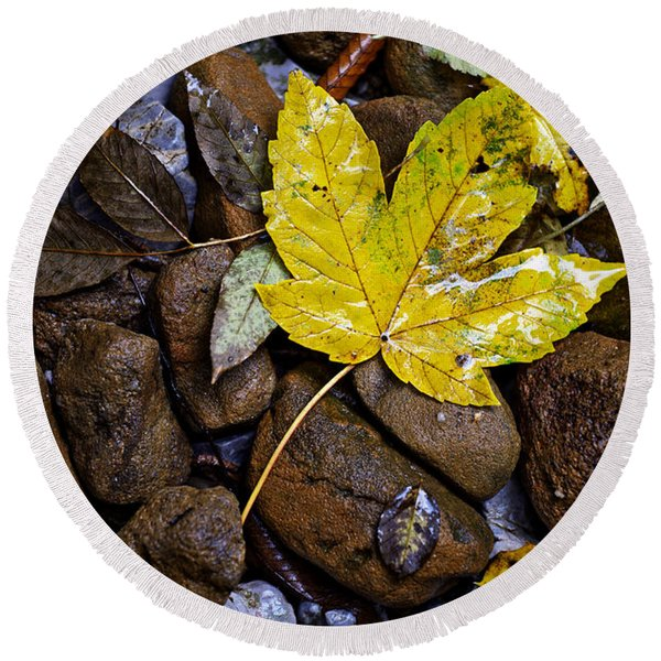 Wet Autumn Leaf On Stones Round Beach Towel