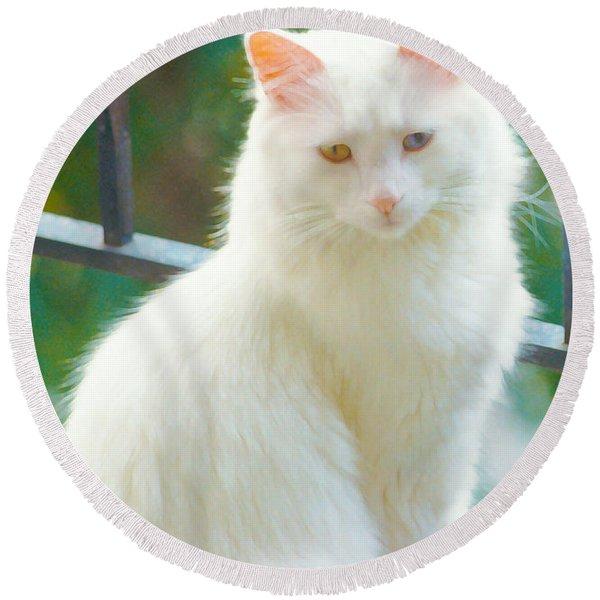 White Cat Round Beach Towel