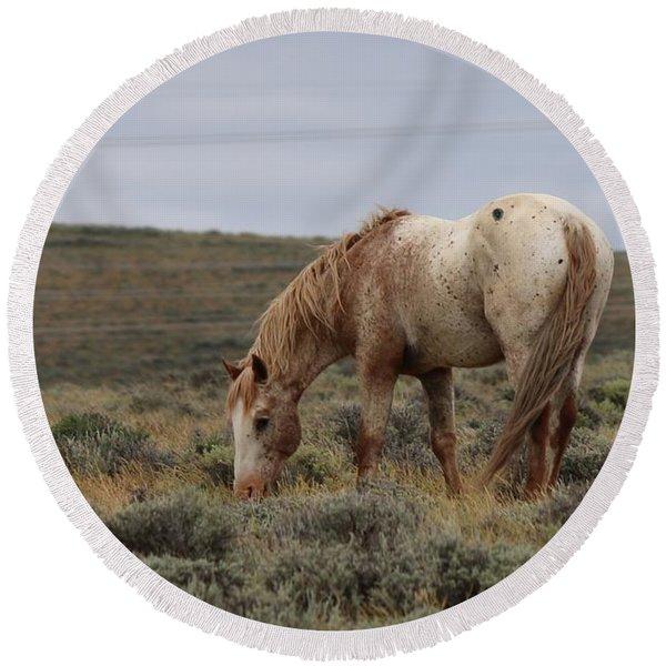 Wild Horse Round Beach Towel