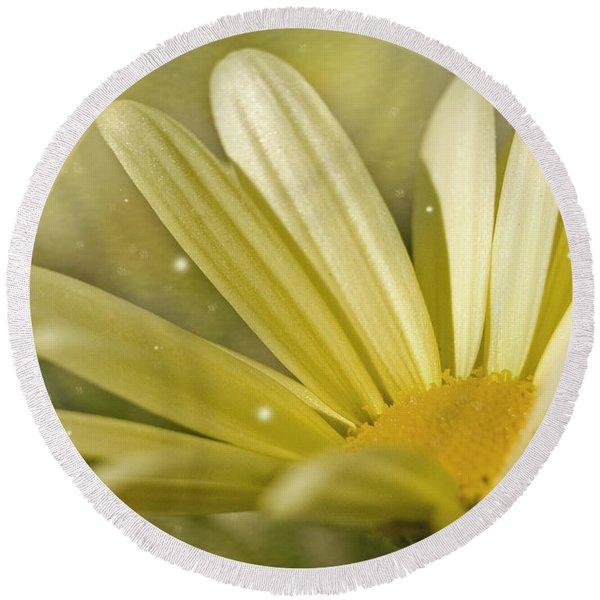 Yellow Daisy Round Beach Towel