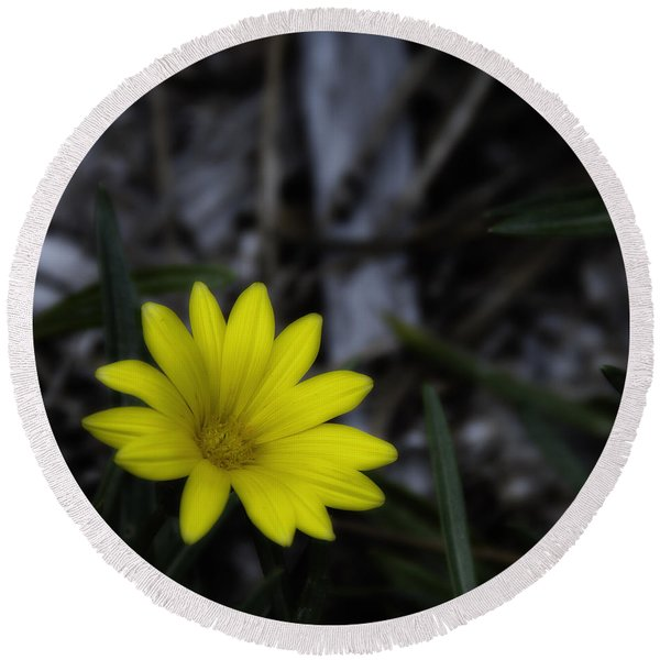 Yellow Flower Soft Focus Round Beach Towel