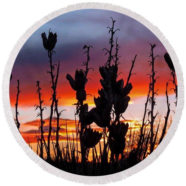 Yucca Sunset Round Beach Towel